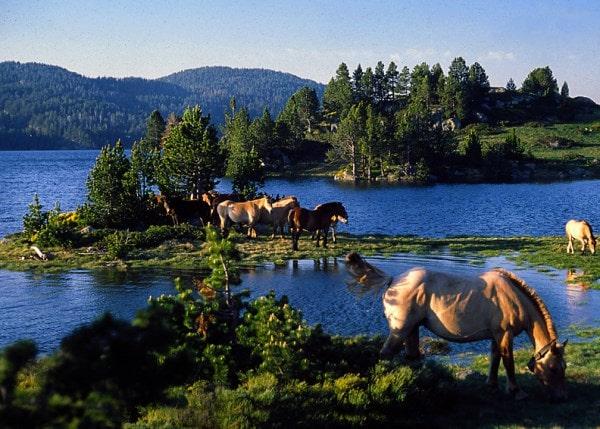Lac de Bouillouses