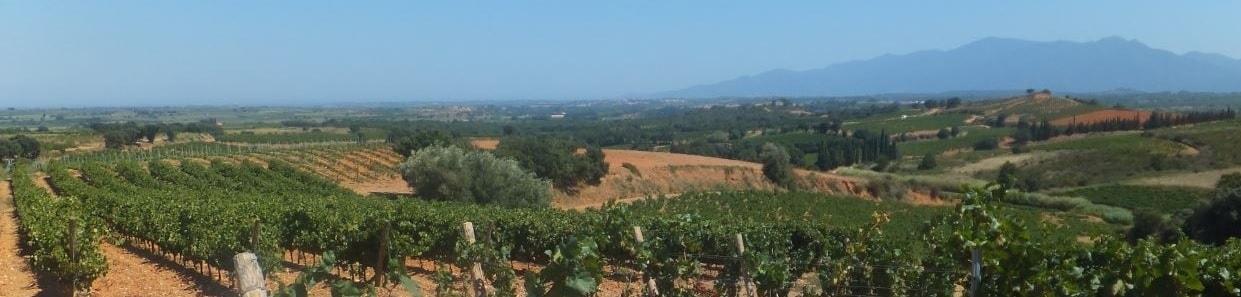 Vakantie Zuid-Frankrijk