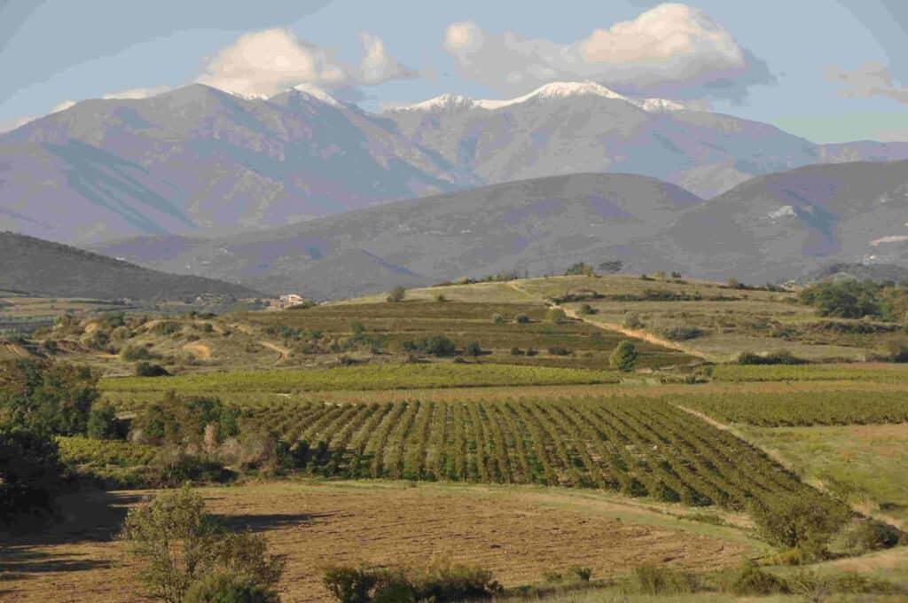 Bezoek onze prachtige streek : De Roussillon ! vakantie logeren bij belgen in frankrijk