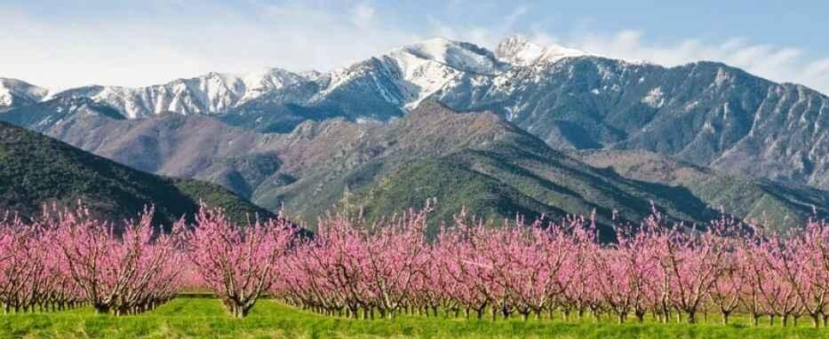 Pyreneeën 1